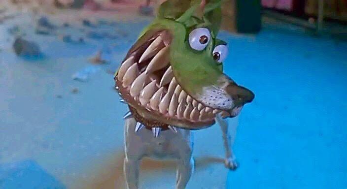 Jack Russel, il cane di the mask