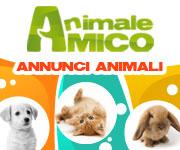Annunci Animali Cani Gatti AnimaleAmico.com