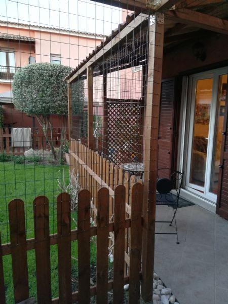 Vendita Gatti Da Privato A Milano Reti Di Protezione Per Gatti 2505