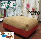 dogbed: pippo