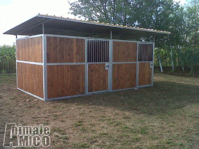 Vendita altri animali da privato a tutto per gli animali for Cavalli in vendita in trentino