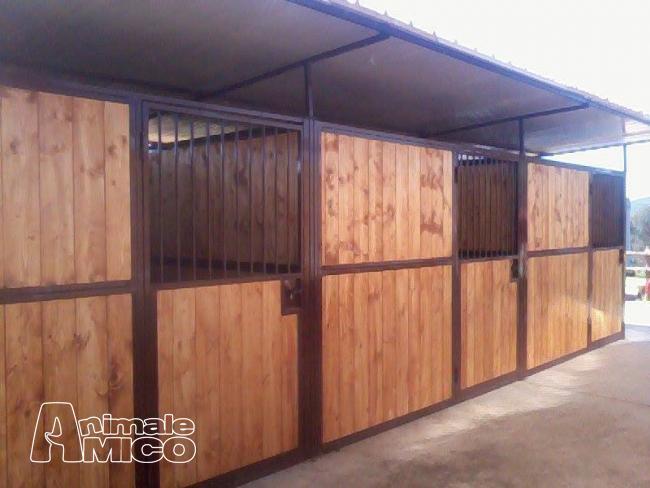 Vendita altri animali da privato a caserta 4 box in linea for Box per cavalli usati in vendita