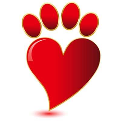 Cerco cani da privato a bari tutto per gli animali cani for Cerco dog sitter