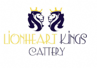 Lionheart Kings Cattery