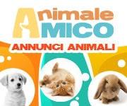 AnimaleAmico annunci cani gratis